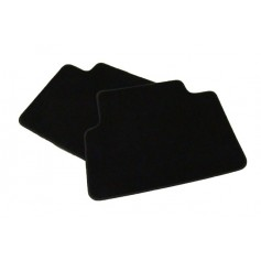 Rear Velour Carpet Mat Set
