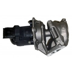EGR Valve Without Cable