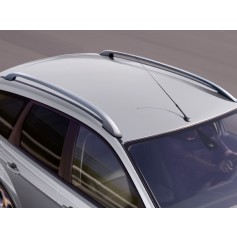 Roof Rails (silver)