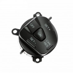 Steering Wheel Speed Control Switch