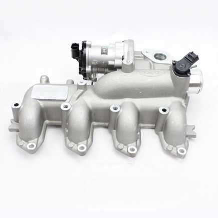 Inlet & Exhaust Manifolds